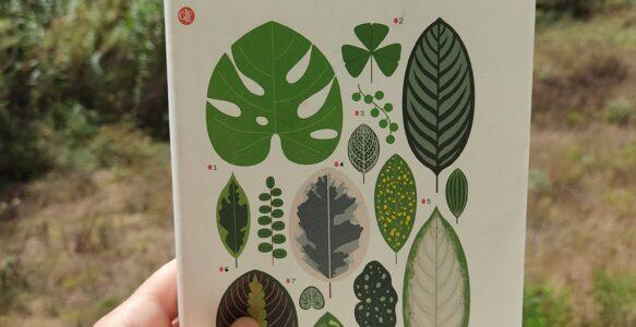 La nazione delle piante e il fascino dell'ecologia